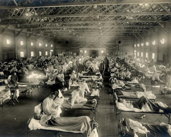 La grippe : le virus Influenza de type A peut il être une arme NRBCe ?