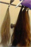 Agent VX et décontamination des cheveux