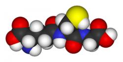 Un traitement polyvalent contre les armes chimiques et les TICs