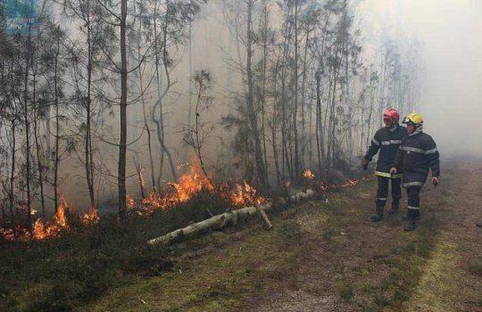 Feux de forêts : la cagoule des sapeurs-pompiers est-elle efficace pour filtrer les fumées et les particules fines ?