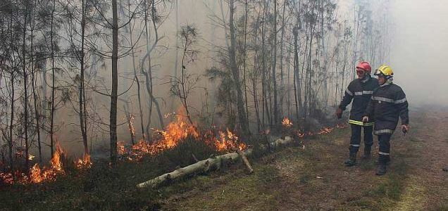 Forest fires: is the fire brigade hood effective in filtering smoke and fine particles?