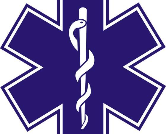 Les Centres d'Enseignement des Soins d'Urgence = CESU
