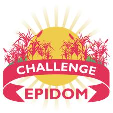 POLYAGRIDOM in the final of the EPIDOM challenge!